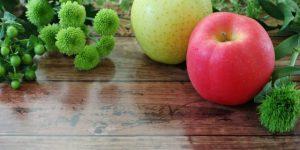 赤りんごと青りんご、なぜ色が違うの?-それぞれの定番品種も紹介!-