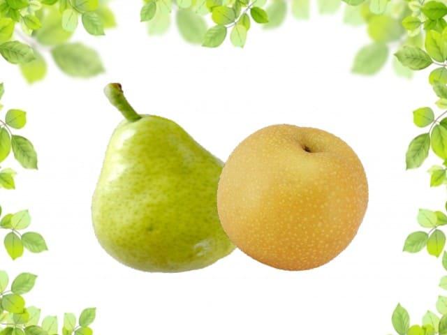 和梨と洋梨