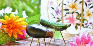 夏野菜の定番!きゅうりとなす-精霊馬でもおなじみ-